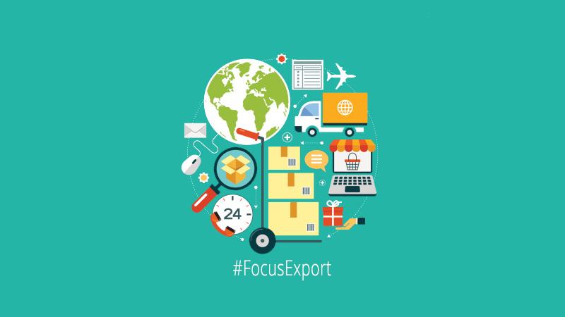 Focus Export